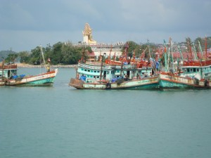 Fishing boats from ferry to Koh Phagnan