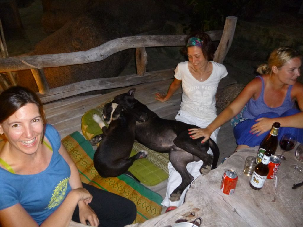 Steffie had some sort of animal magnet - these dogs (and lots of other animals on the island) just flocked to her!