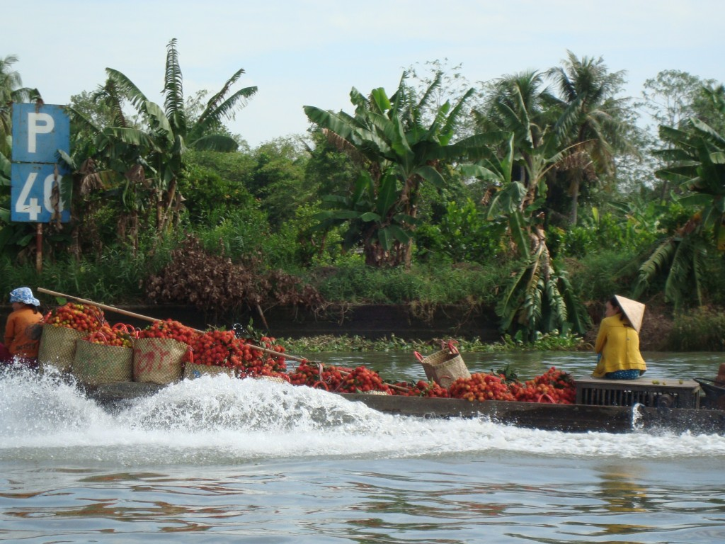 "A tomato boat in a ""floating market"" on the Mekong"